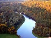Золотая осень в Латвии