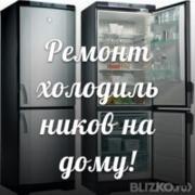 Ремонт холодильников и заправка фреоном на дому (066)493-71-81